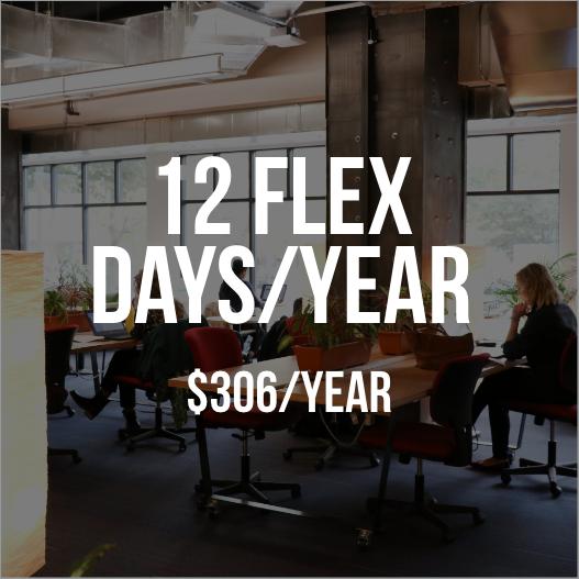12-flex-days